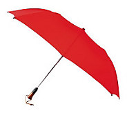 Leighton Magnum Family Size Auto Open & Close Umbrella - A181963