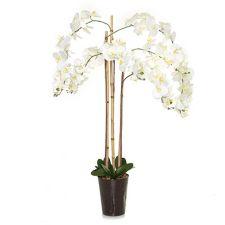 ABELLA  Flora kunstvolle Blumen XXL-Orchidee 72 Prachtblüten H. ca. 125cm