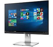 Dell UltraSharp 24 Monitor - E289841