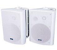 TIC Pro Performance 120-Watt Patio Speakers - E260786