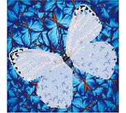 Diamond Dotz Flutterby White 14 x 14 Facet Art Kit - F232328