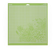 Cricut 12 x 12 Cutting Mat 2-Pack - F250067