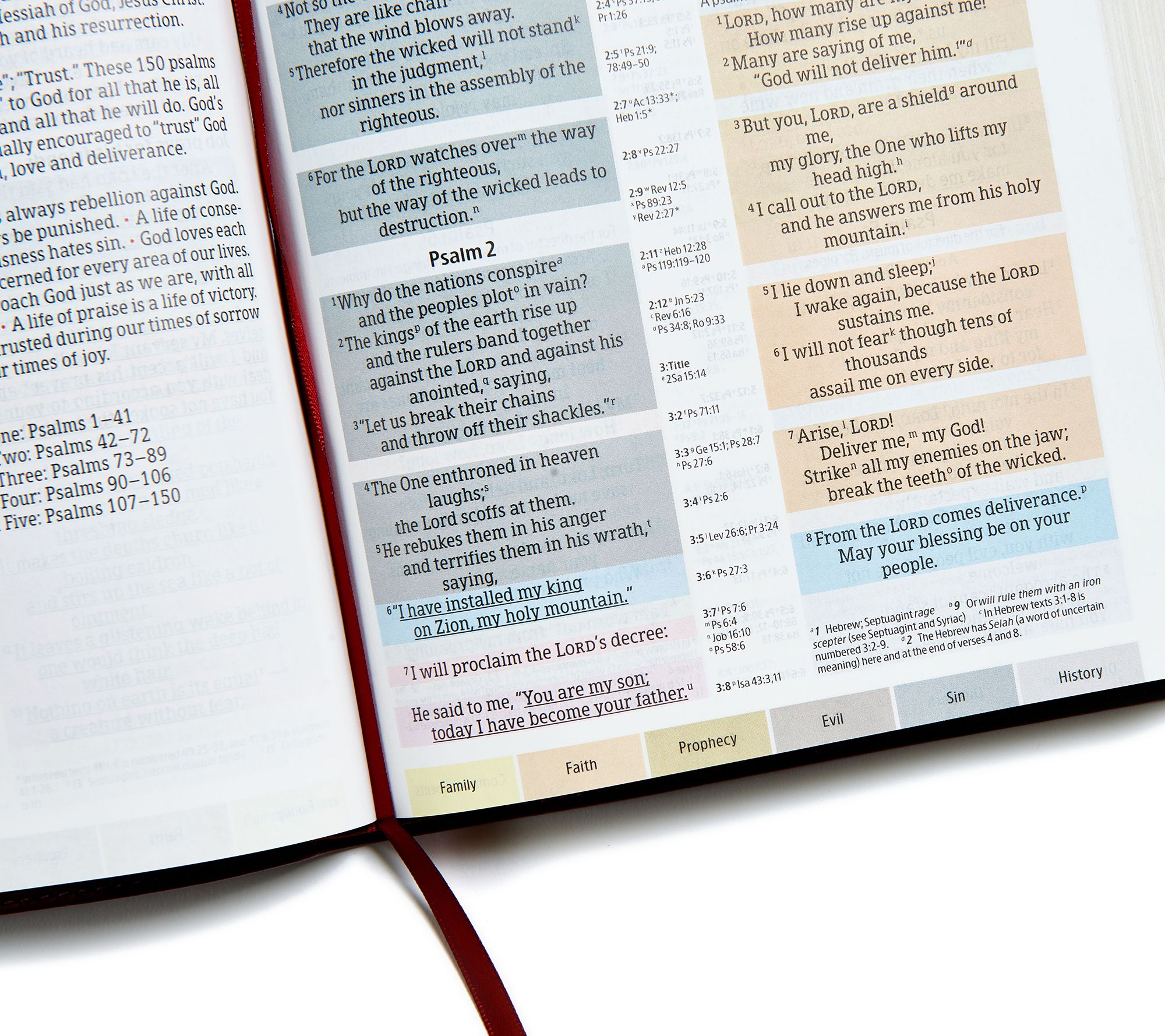 NIV Rainbow Study Bible with Color Coded Verses — QVC com
