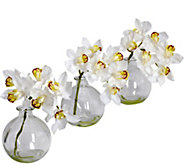 8 Cymbidium with Vase (Set of 3) by Nearly Natural - H295700