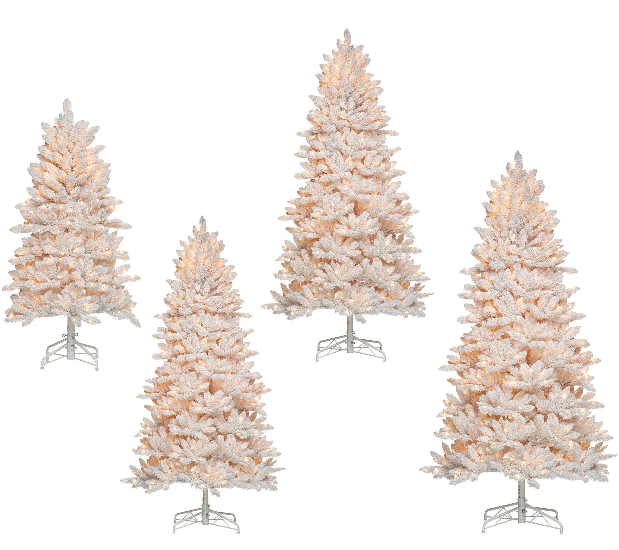 Bethlehem Lights Flocked Christmas Tree with Instant Power — QVC.com