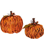 Set of 2 6 Braided Weave Raffia Pumpkins - H209401