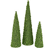 Set of 3 Illuminated Glitter Berry Cone Trees by Valerie - H211601
