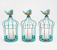 Set of 3 Indoor/ Outdoor Illuminated Birdcages by Valerie - H218801