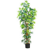 6 Curved Trunk Bamboo Tree by Nearly Natural - H162302