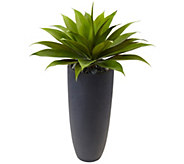 Agave in Gray Cylinder Planter by Nearly Natural - H309905