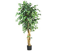 6 Multi-Trunk Ficus Tree by Nearly Natural - H162306