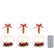 Luminara S/3 Harvest Blown Glass Ornaments with Flameless Tealight Candle - H212906