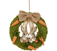 16 Bunny & Carrot Moss Wreath by Valerie - H213806