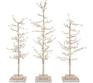 Set of 3 Sparkling Diamond Ice Trees by Valerie - H215306
