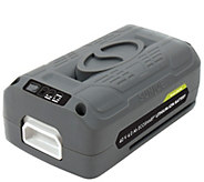 Snow Joe/Sun Joe 40V Lithium-Ion Battery - H285506