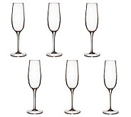 Luigi Bormioli 8.25-oz Palace Champagne Flutes- Set of 6 - H364907