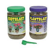 Rootblast Growth Formula & Plantblast Time Released Plant Food - H132608