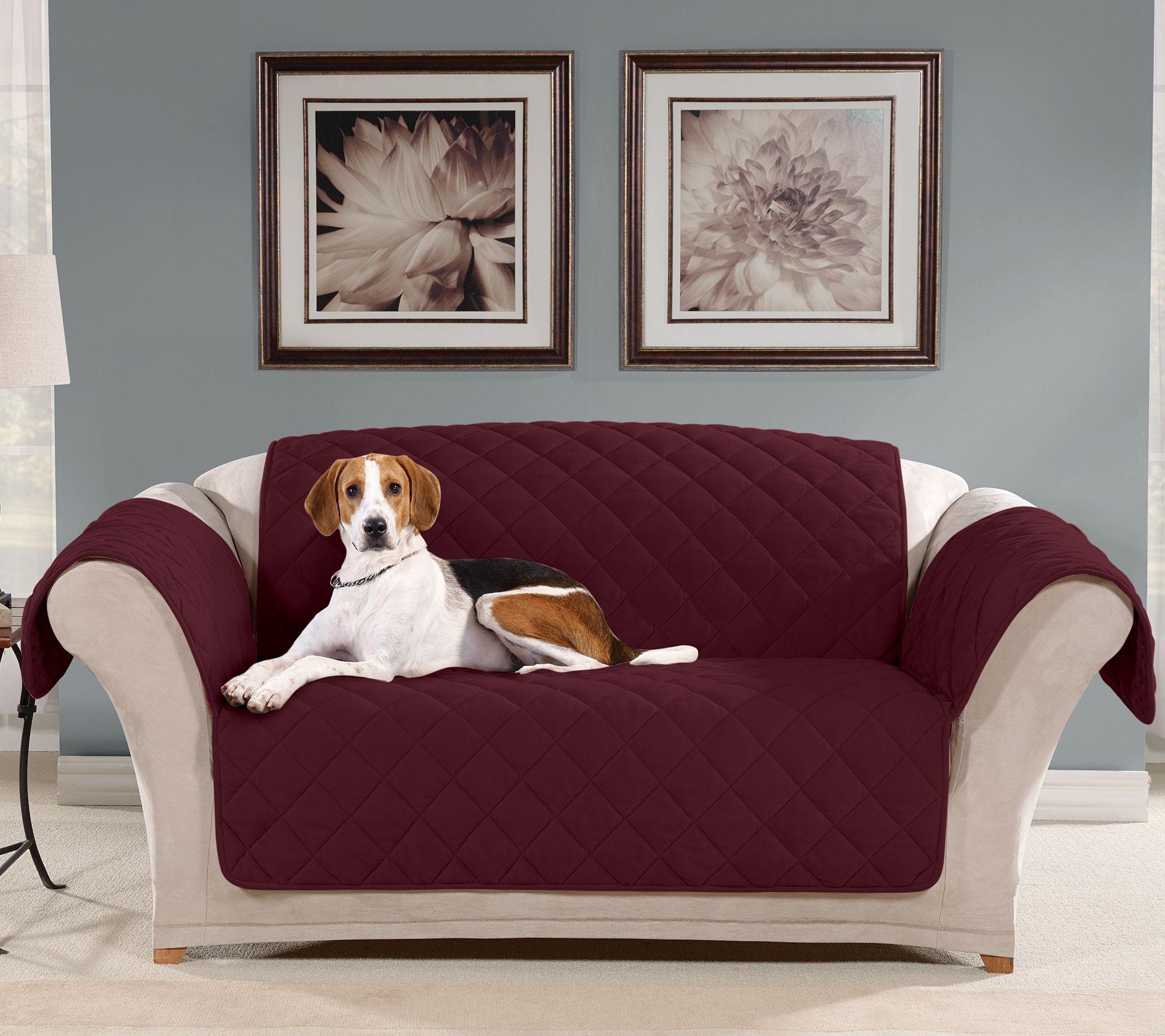 sofa saver dog alarm