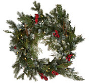 Scott Living 24 LED Color Flip Snow Dusted Wreath w/7 Functions - H212410