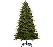 Bethlehem Lights 7.5 Grand Fir Tree with Swift Lock Technology - H208514