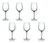 Luigi Bormioli 12.75-oz Vinoteque Fragrante Glasses - Set of 6 - H364917