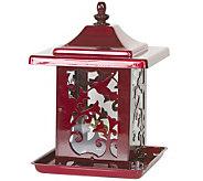 Hummingbird Design Seed Feeder - H177620