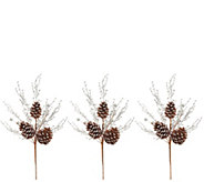 Martha Stewart Set of (3) 18 Metallic Woodland Pinecone Picks - H217622
