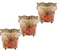Set of 3 Harvest Metal Planter Baskets by Valerie - H216623