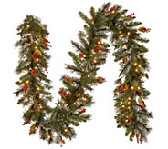 National Tree Company 9 Wintry Pine Prelit Garland - H303125
