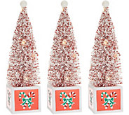 S/3 Illuminated Bottlebrush Trees with Holiday Bases by Valerie - H216226