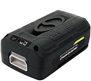 Snow Joe iON EcoSharp PRO 40 V 5.0 Ah Lithium-Ion Battery - H286933