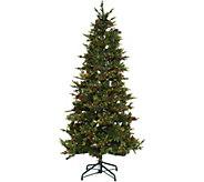 As Is Bethlehem Lights 6.5 Heritage Spruce Christmas Tree - H210836