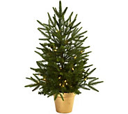 2.5 Lit Christmas Tree in Golden Planter by Nearly Natural - H292837