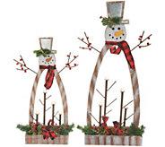 Plow and Hearth Set of 2 Graduated Illuminated Snowmen - H215938