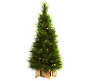 3 Lit Christmas Tree in Burlap Bag by Nearly Natural - H292839