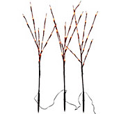 Set of 3 Decorative LED Light Up Branches by Lori Greiner - H209640