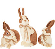 Set of 3 Sisal Bunny Friends with Bows by Valerie - H217940
