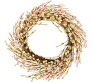 24 Pastel Pussy Willow Wreath by Valerie - H217941
