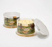 HomeWorx by Harry Slatkin Set of 2 Deluxe Tiare Sunrise 4-Wick Candles - H217742
