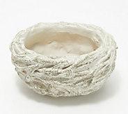 Martha Stewart Indoor/Outdoor Decorative Nest Planter - H218643
