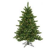 12 Camdon Prelit Fir Tree by Vickerman - H155244