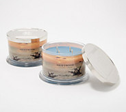 HomeWorx by Harry Slatkin Set of 2 Deluxe Driftwood 4-Wick Candles - H217744