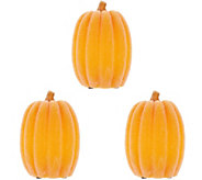Set of 3 Illuminated Wax Luminaries with Timers by Valerie - H214946