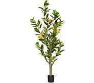 5 Decorative Lemon Tree with Base by Valerie - H213748