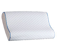 Sealy Memory Foam Contour Pillow - H283149