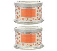 HomeWorx by Harry Slatkin Set of 2 Cocktail 4-Wick Candles - H215850