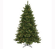 6-1/2 Camdon Fir Tree by Vickerman - H142952
