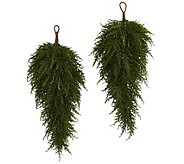 Set of (2) 26 Cedar Artificial Teardrops by Nearly Natural - H301053