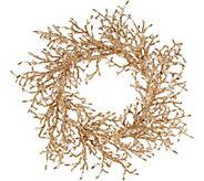 19 Glittered Iced Crystal Twig Wreath - H209554
