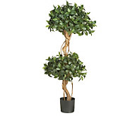 4 Sweet Bay Double Ball Topiary Tree by NearlyNatural - H357354